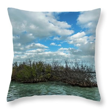 Throw Pillow featuring the photograph Mangroves In Key West Damaged By The Storm by Bob Slitzan