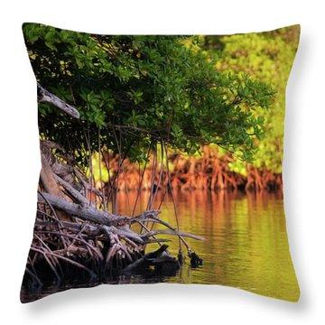 Mangroves Of Roatan Throw Pillow by Doug Sturgess