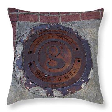 Manhole II Throw Pillow by Flavia Westerwelle