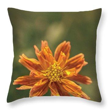 Manifesting Sundot..... Throw Pillow