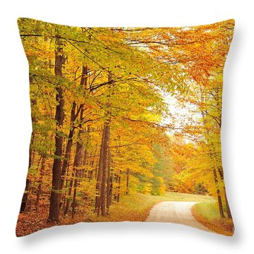 Manisee National Forest In Autumn Throw Pillow
