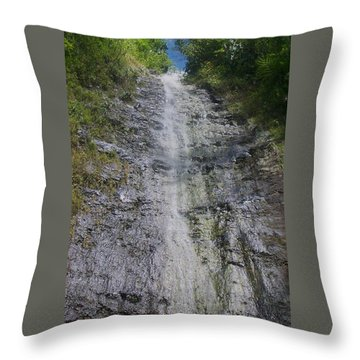 Manoa Falls Throw Pillow