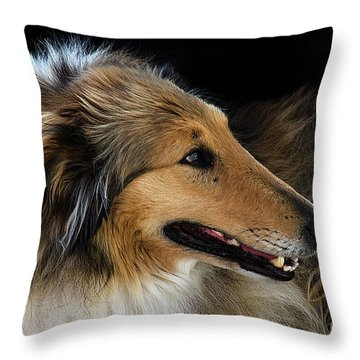Throw Pillow featuring the photograph Man's Best Friend by Bob Christopher