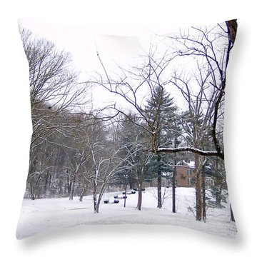 Throw Pillow featuring the photograph Mansion In The Snow by Skyler Tipton