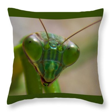 Mantis Face Throw Pillow by Jonny D