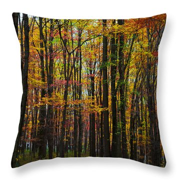 Many Colors Of Autumn Throw Pillow