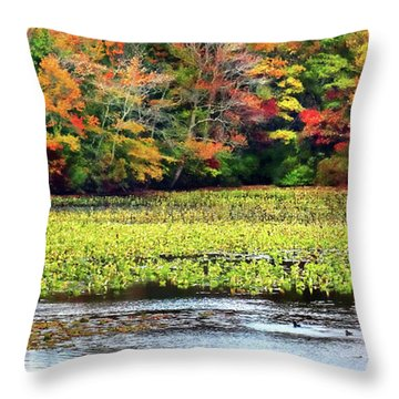 Many Colors Of Autumn Throw Pillow by Mikki Cucuzzo