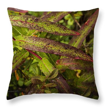 Many Colors Of Fall Fireweed Throw Pillow