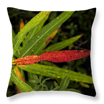 Many Faces Of Fireweed 2 Throw Pillow