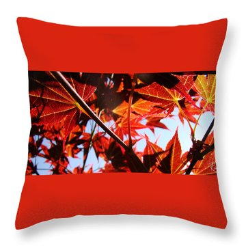 Maple Fire Throw Pillow