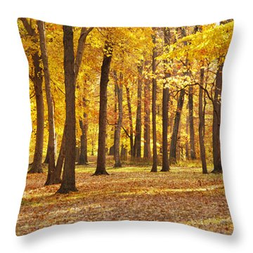 Throw Pillow featuring the photograph Maple Glory by Francesa Miller