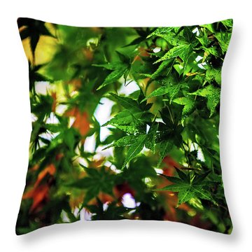 Maple In The Mist Throw Pillow