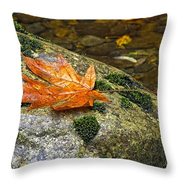 Maple Leaf On A Rock Throw Pillow