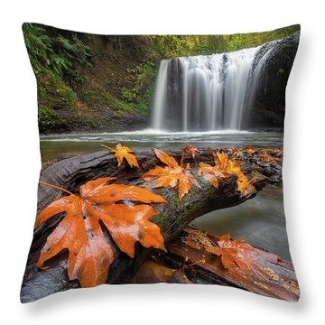 Maple Leaves On Tree Log At Hidden Falls Throw Pillow