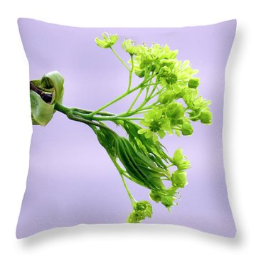 Maple Tree Flowers Throw Pillow