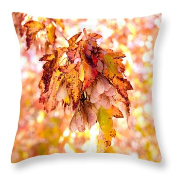 Maple Tree In Autumn Throw Pillow