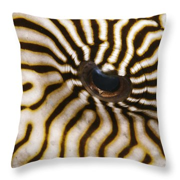Mappa Pufferfish Eye Throw Pillow by Steve Rosenberg - Printscapes
