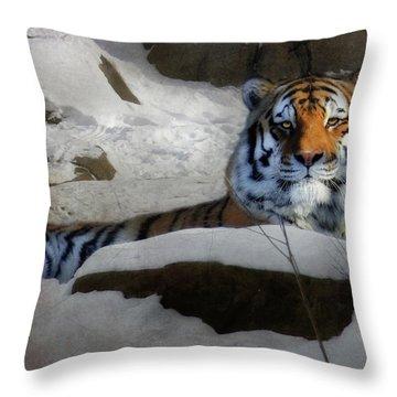 Mara Throw Pillow by Lori Deiter