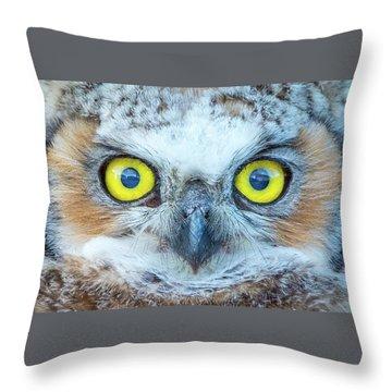 Marble Eyes Throw Pillow