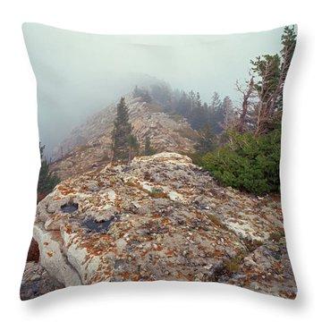 Marble View Fog-sq Throw Pillow