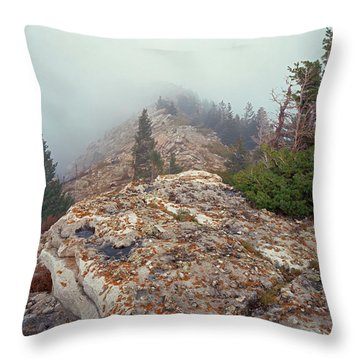 Marble View Fog Throw Pillow