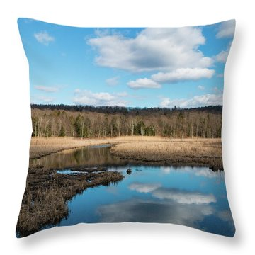 March Afternoon At Black Creek Throw Pillow