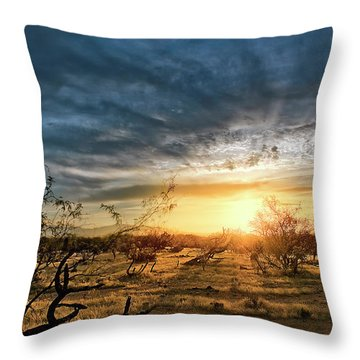 March Sunrise Throw Pillow