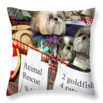 Mardi Gras Pekingese Pups Throw Pillow by Kathleen K Parker