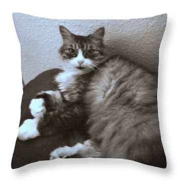 Mari_ To My Friend From Sunnyvale Throw Pillow