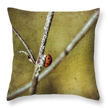 Marienkaefer - Ladybird Throw Pillow