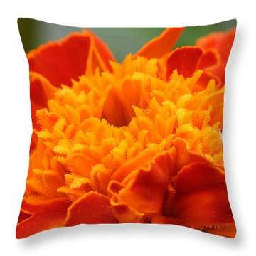 Throw Pillow featuring the photograph Marigold Center by William Selander