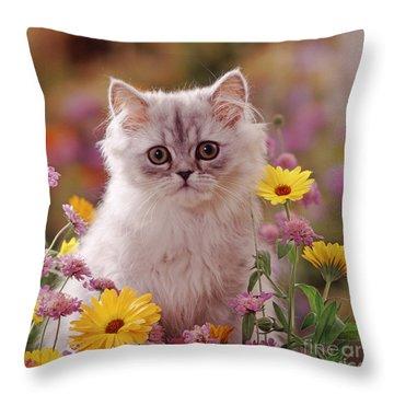 Marigold Chinchilla Throw Pillow