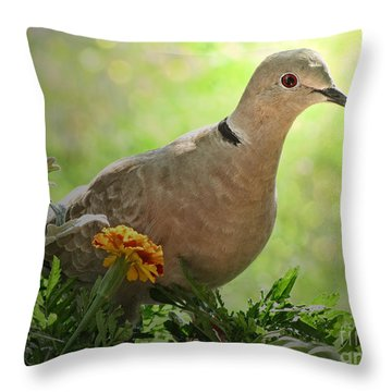Throw Pillow featuring the photograph Marigold Dove by Debbie Portwood
