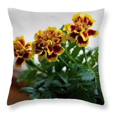 Marigold In Winter Throw Pillow by Jeff Severson
