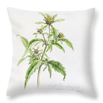 Marigold Throw Pillow by WJ Linton