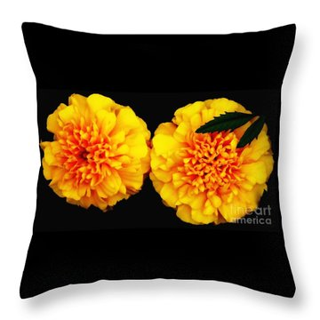 Throw Pillow featuring the photograph Marigolds With Oil Painting Effect by Rose Santuci-Sofranko