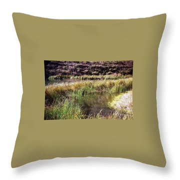 Marine Headlands Pond And Flowers Throw Pillow by Ted Pollard