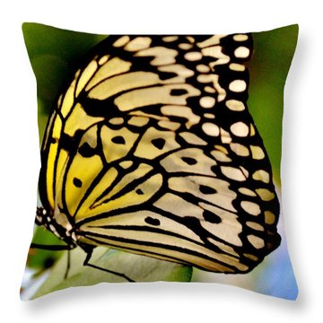 Mariposa Butterfly Throw Pillow
