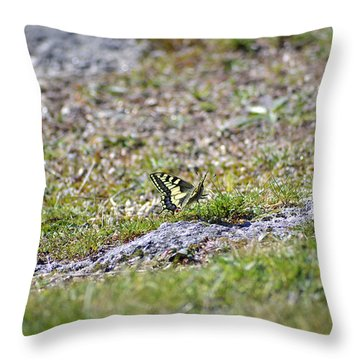 Mariposa Reina Throw Pillow