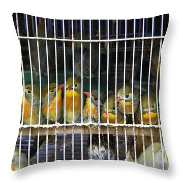 Market Finches Throw Pillow