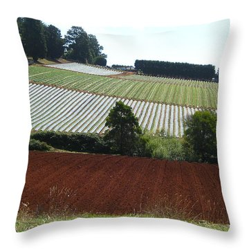 Market Gardening Throw Pillow