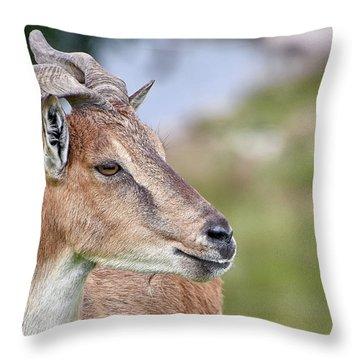 Markhor Throw Pillow