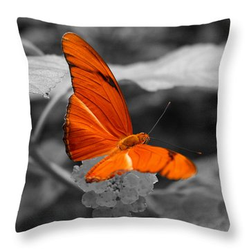 Marmalade Delight Colorized Throw Pillow