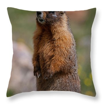 Throw Pillow featuring the photograph Marmot by Gary Lengyel