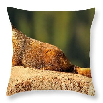 Marmot Life Throw Pillow