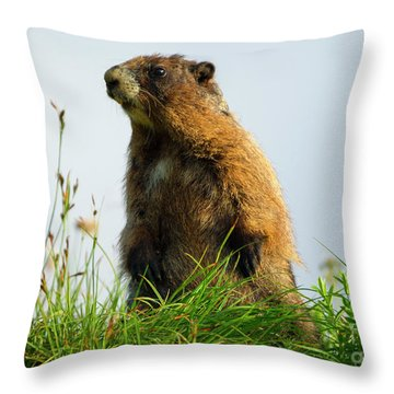Marmot Sentry Throw Pillow