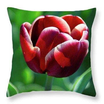 Maroon Tulip Throw Pillow