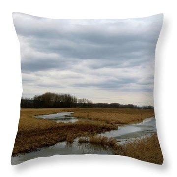 Marsh Day Throw Pillow