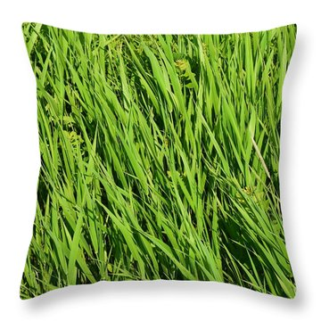 Marsh Grasses Throw Pillow