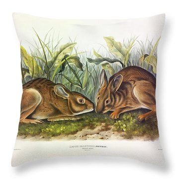 Marsh Hare Throw Pillow